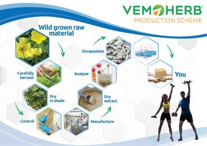 Production Scheme: VemoHerb Bulgarian Tribulus Potent extract in bulk