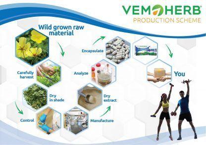 Production Scheme: VemoHerb Bulgarian Tribulus Drink
