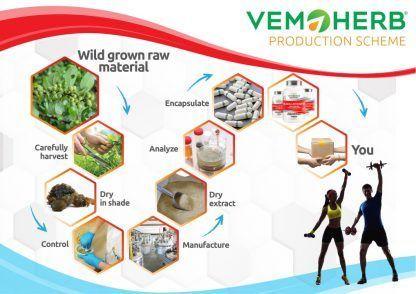Production Scheme: VemoHerb Guggulsterone