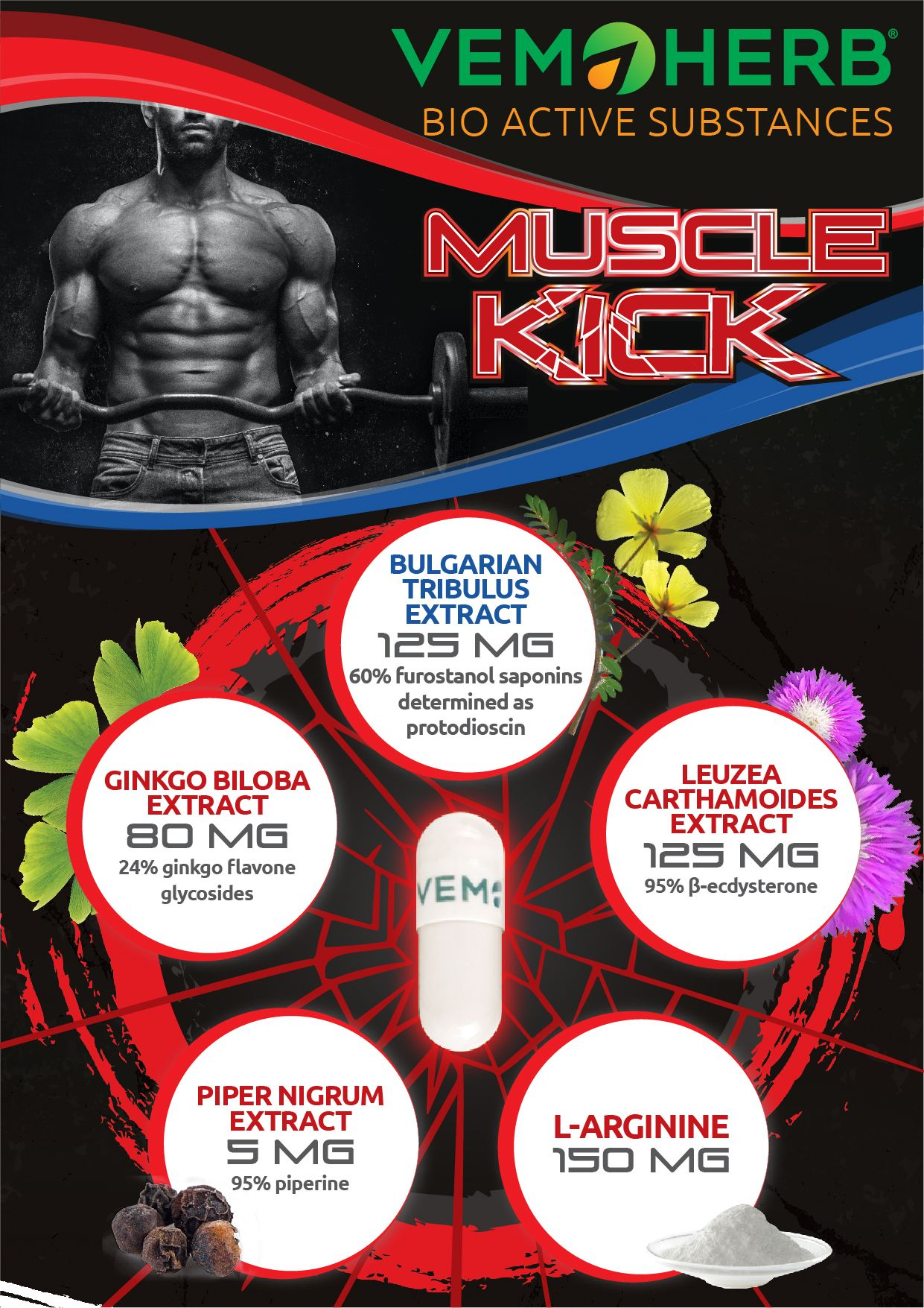 Bioactivesubstanes MuscleKick