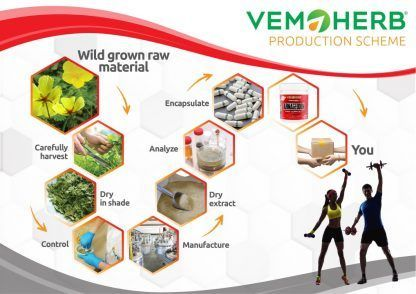 Production Scheme: VemoHerb Armageddon