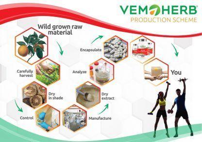 Production Scheme: VemoHerb ECA