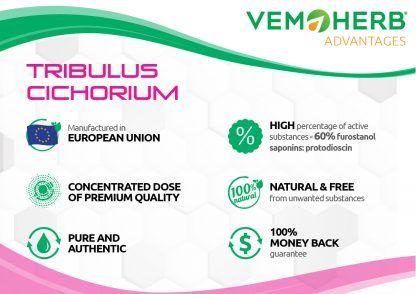 Advantages: VemoHerb Tribulus Cichorium