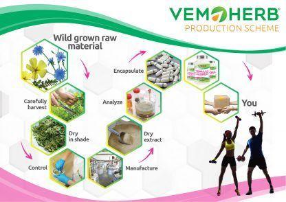Production Scheme: VemoHerb Tribulus Cichorium