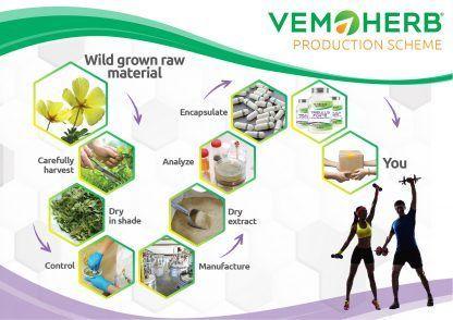 Production Scheme: VemoHerb Tribulus Forte