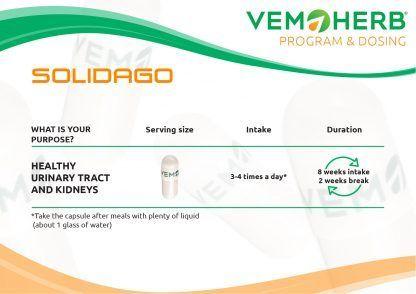 Program and Dosing: VemoHerb Solidago