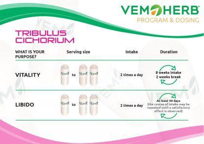 Program and Dosing: VemoHerb Tribulus Cichorium