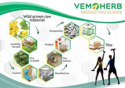 Production Scheme: VemoHerb Ginkgo Hypericum