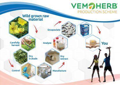 Production Scheme: VemoHerb Bulgarian Tribulus Maxx
